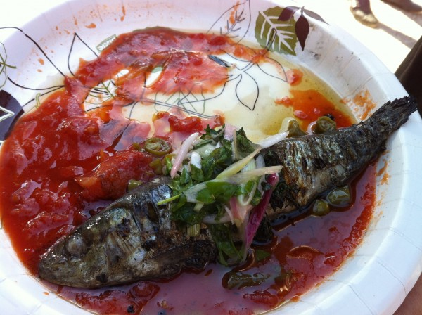 Grilled Anchovy With Tomato Sauce