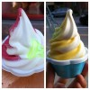 Twisted Lemon and Framboise Soft Serve & Twisted Coconut and Florida Orange Soft Serve